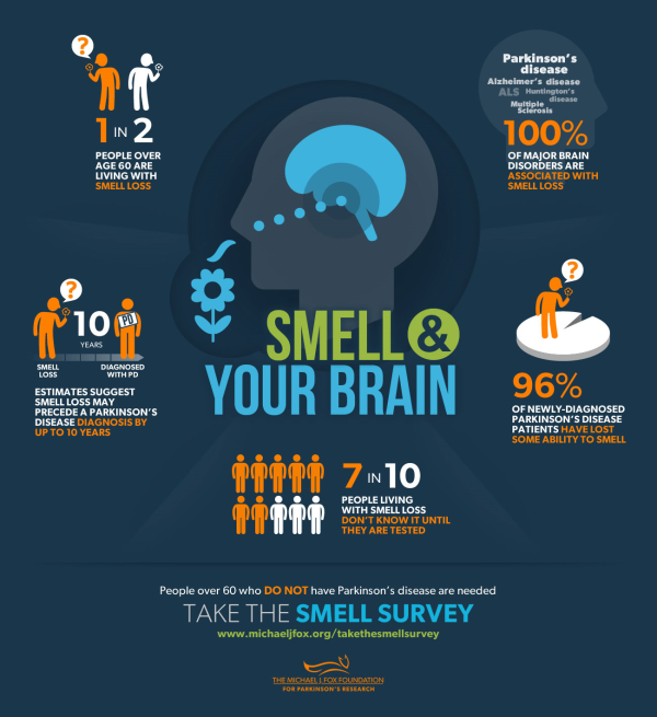 smell infographic
