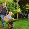 dad pushing child in wheelbarrow